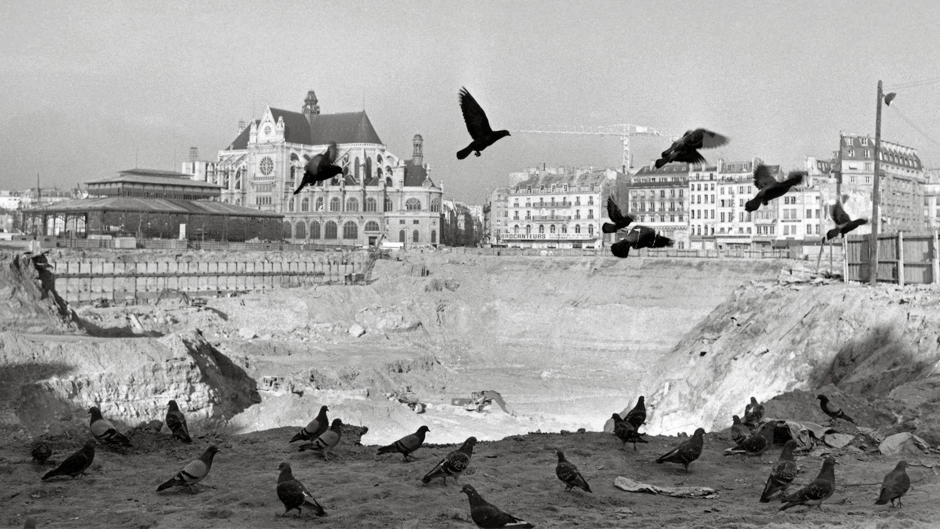 Le-destin-des-halles-les oiseaux-1973